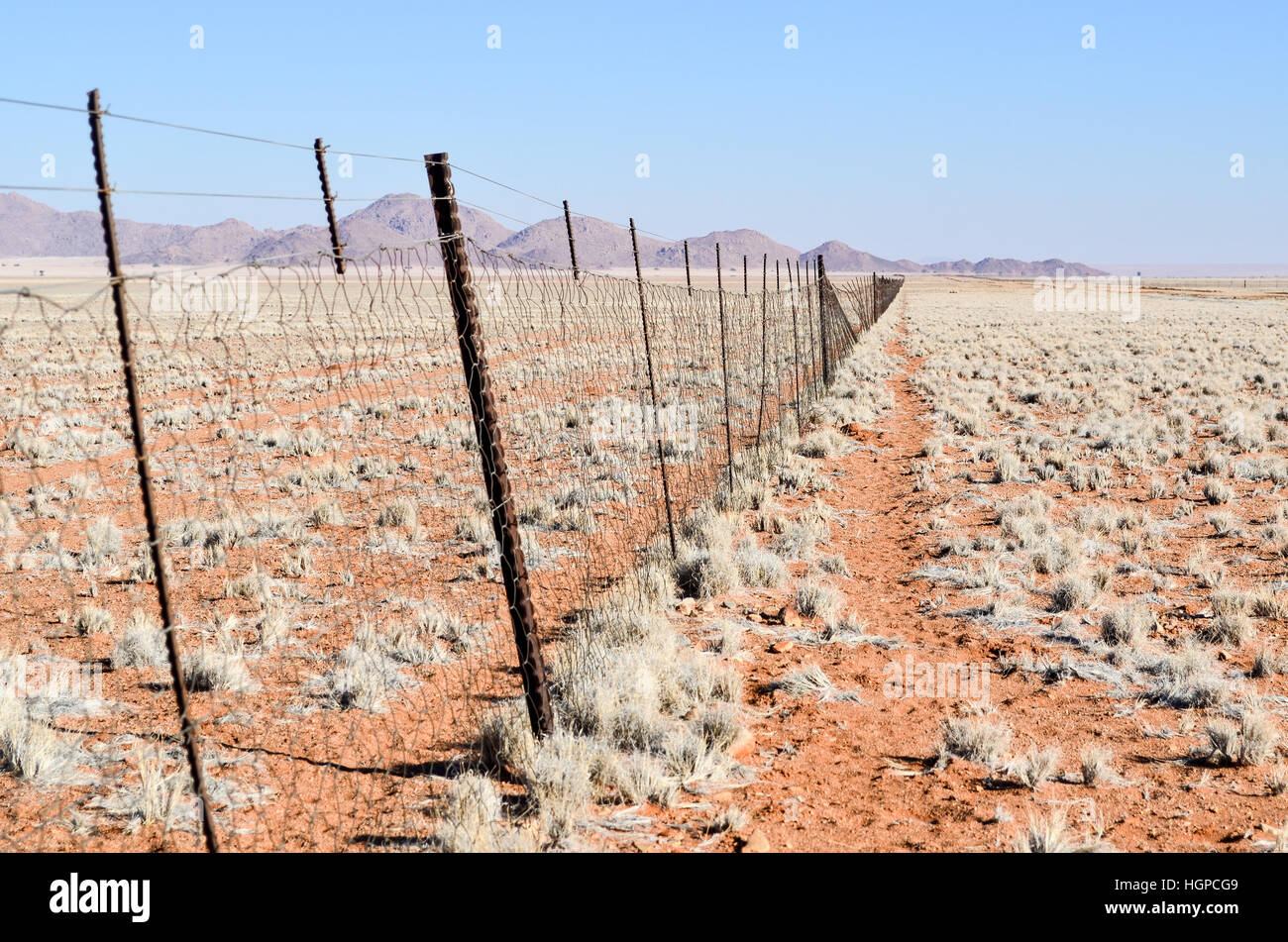 High fence for game reserve in Namibia - Stock Image