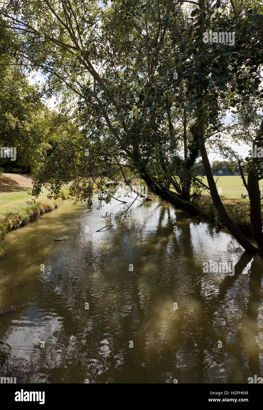 View of the Delf Stream, The Butts, Sandwich, Kent - Stock Image