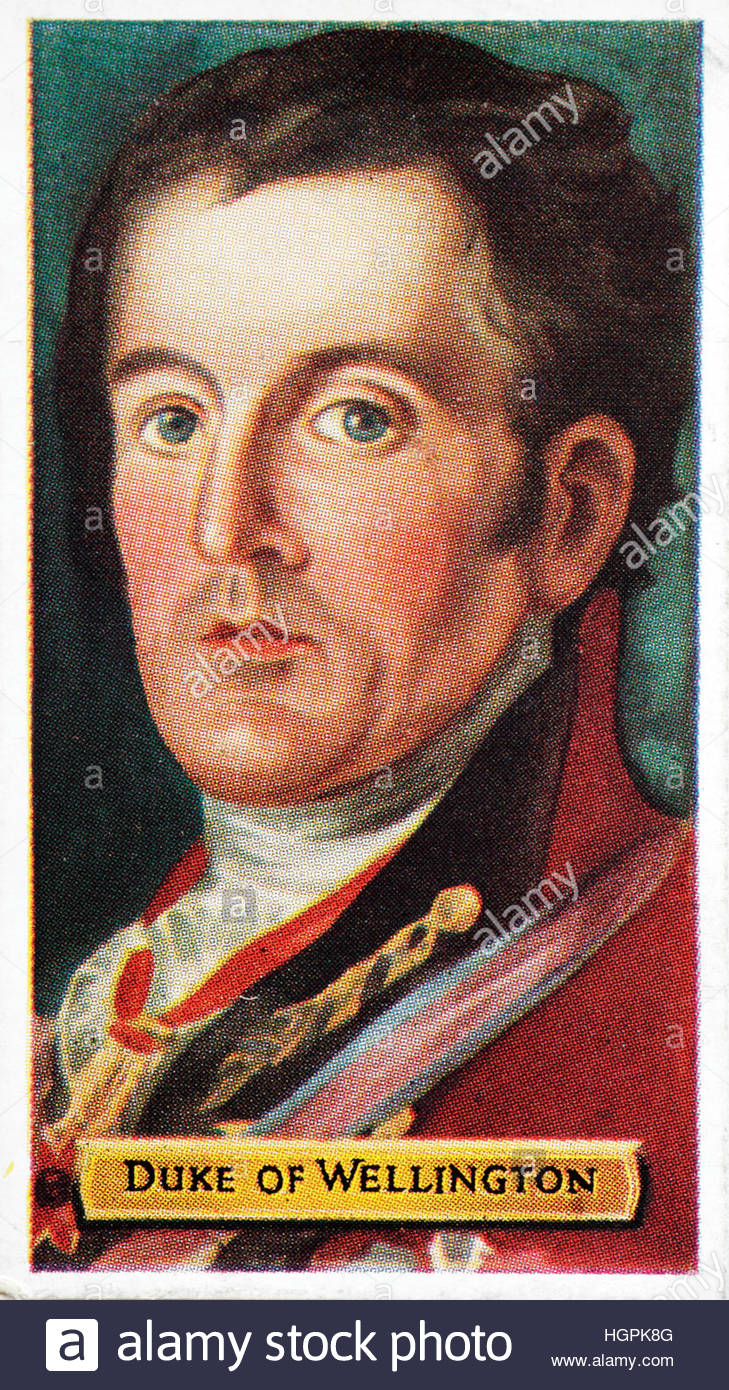 Duke of Wellington, 1769 – 1852, British solider and statesman best known for his defeat of Napoleon at the Battle - Stock Image