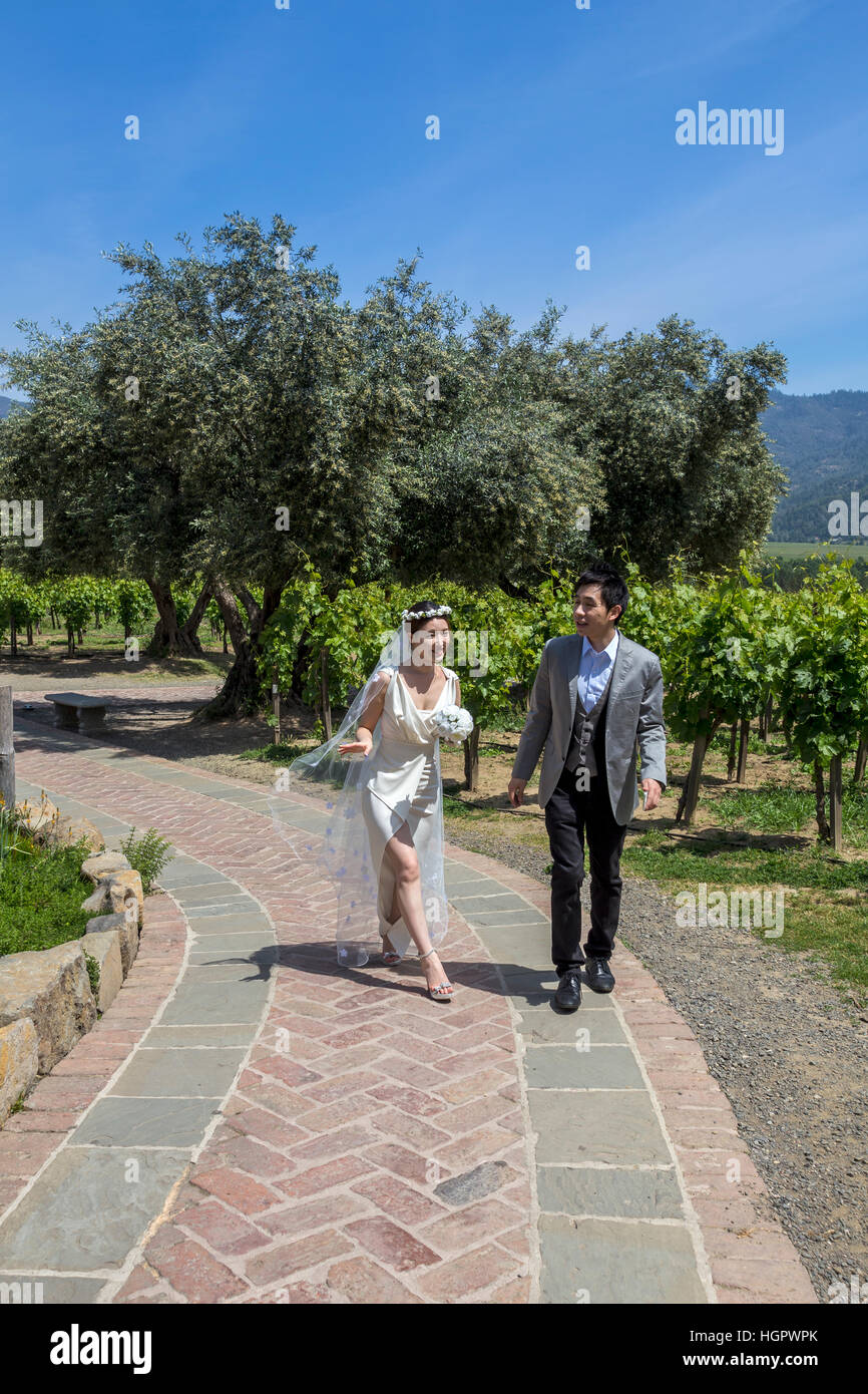 Newlyweds, Castello di Amorosa, Calistoga, Napa Valley, Napa County, California - Stock Image