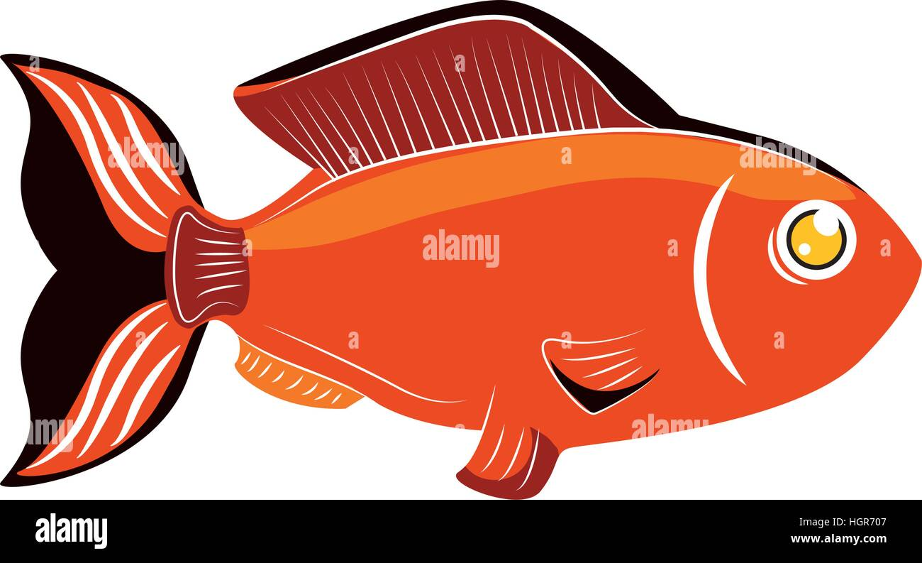 Multi Color Fish Icon Image Stock Photos & Multi Color Fish Icon ...