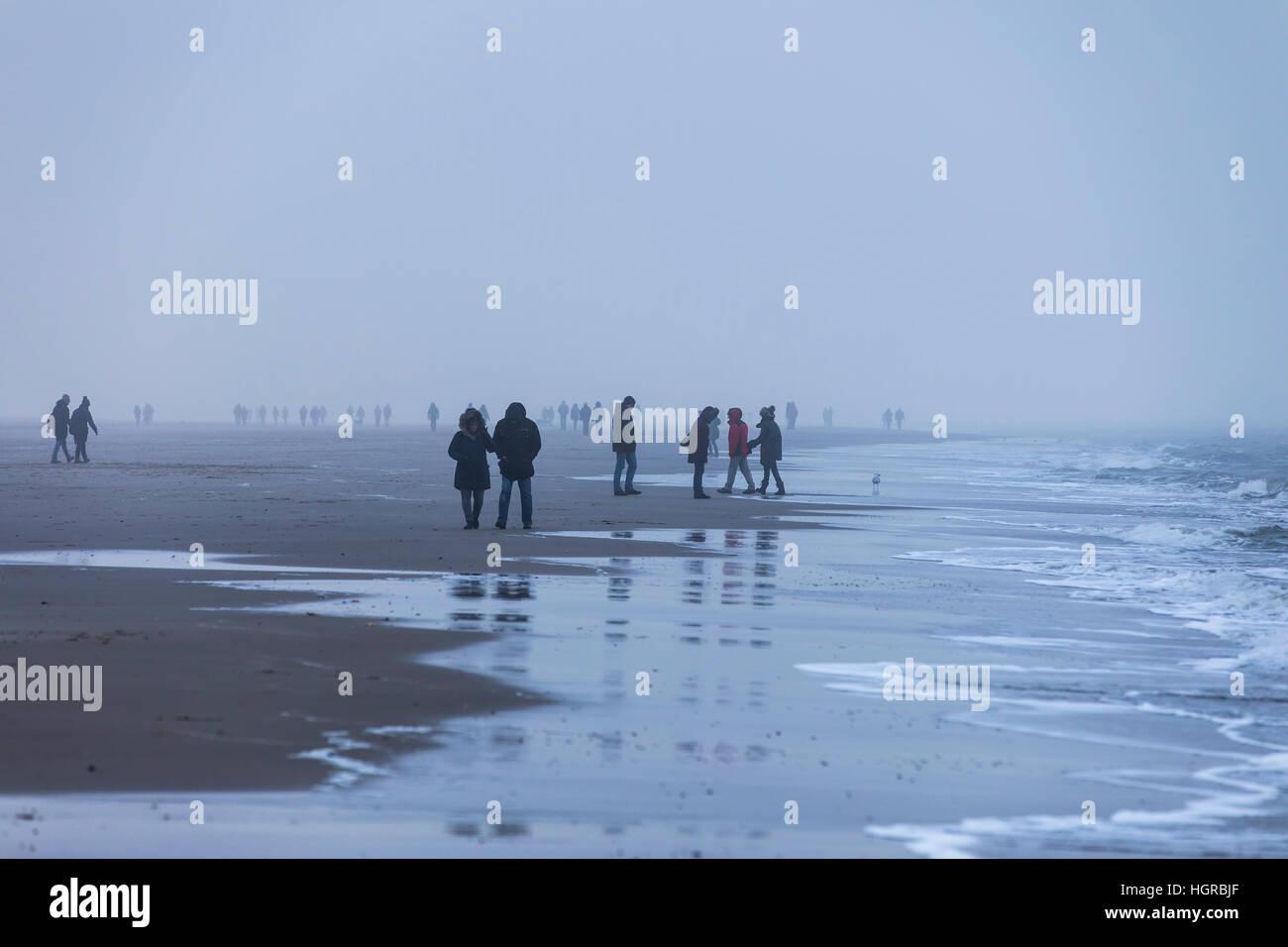 Strollers on the beach near Bergen aan Zee, North Holland, winter, fog, stroll - Stock Image