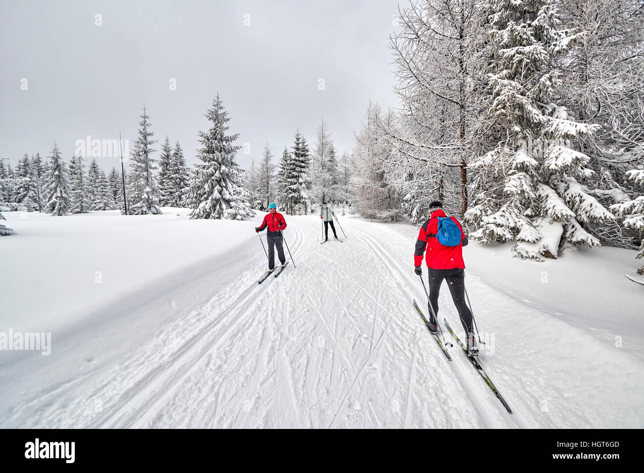 Jakuszyce, Poland - January 06, 2017: Cross-country skiers running on prepared tracks in snow on a cloudy day. - Stock Image