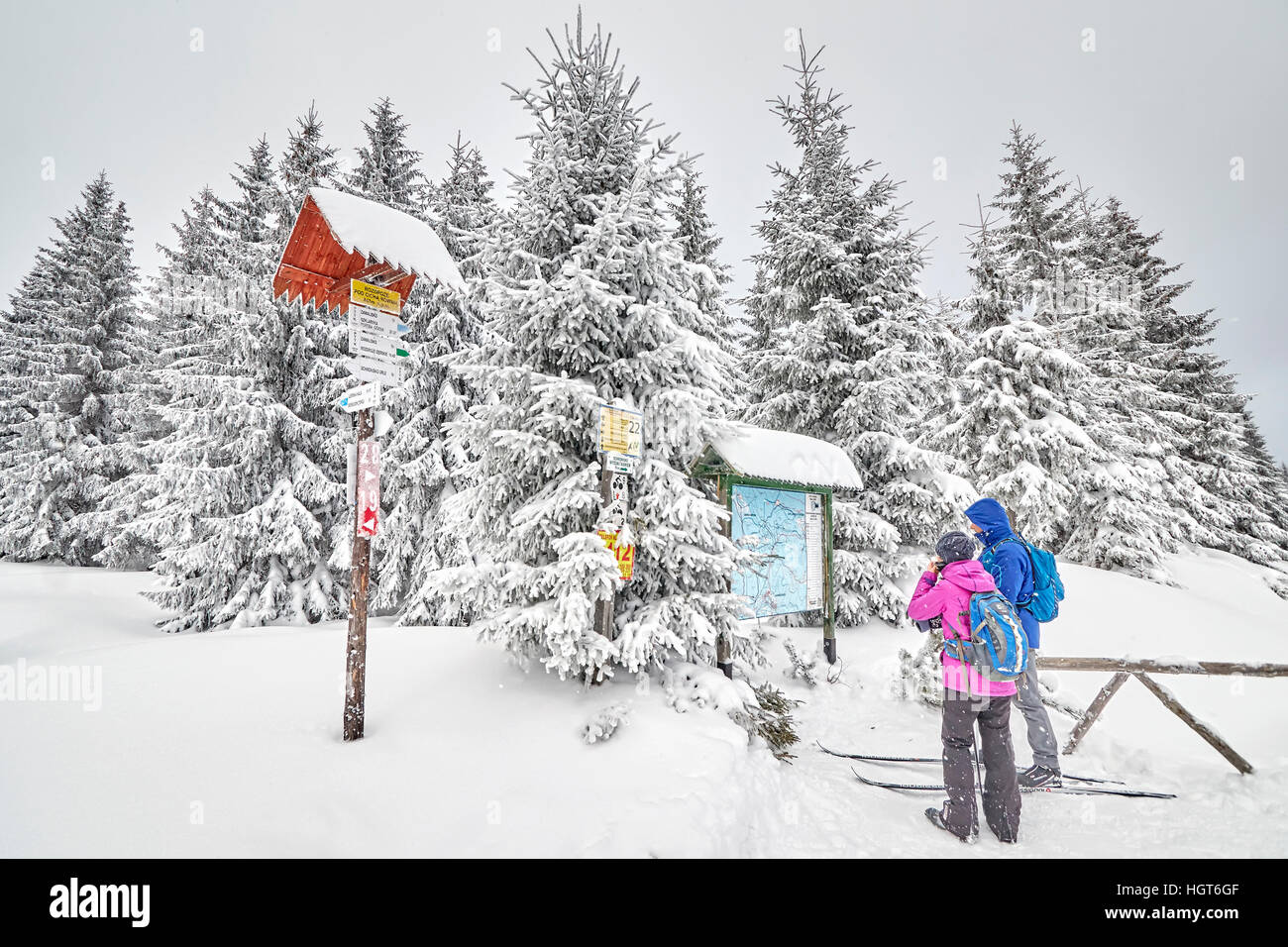 Jakuszyce, Poland - January 06, 2017: Tourist watching a trail map at cross-country skiing trail intersection. - Stock Image