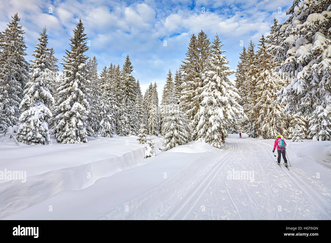 Winter landscape with cross-country skiing tracks, skier and snow covered trees. - Stock Image
