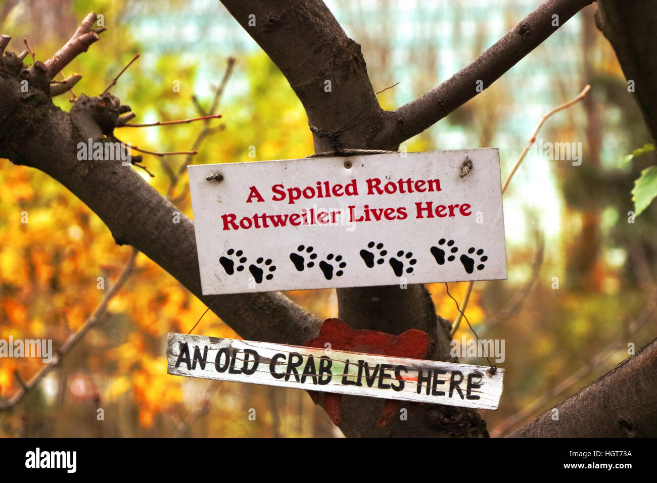 Sign for a spoiled dog house, Paris - Stock Image