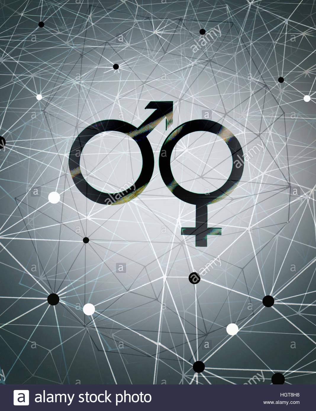 Male and female gender symbols and network pattern - Stock Image