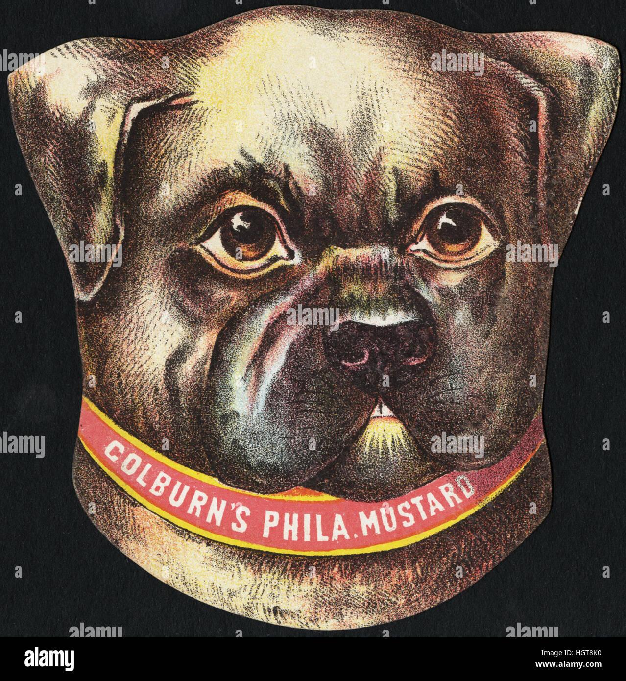 Colburn's Phila. Mustard [front]  - Food Trade Card - Stock Image