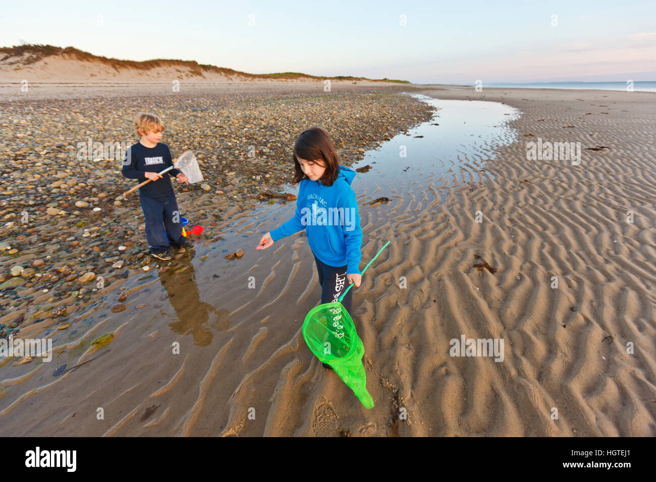 ab580547ce4 Boy And Girl On Beach Collecting Seashells Stock Photos   Boy And ...