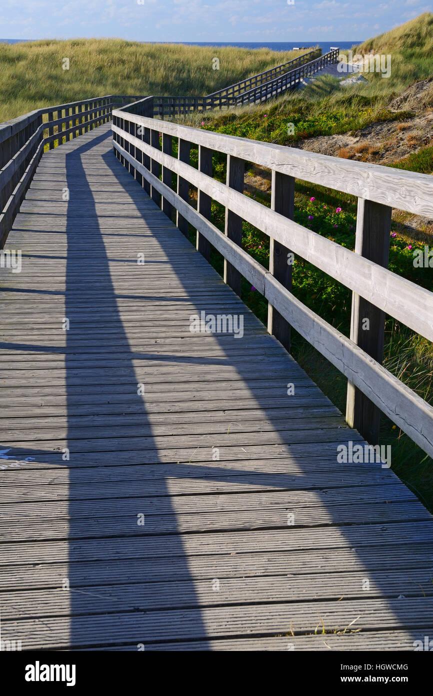 Bohlenweg durch die Duenen zum Strand von Kampen, Sylt, nordfriesische Inseln, Nordfriesland, Schleswig-Holstein, - Stock Image