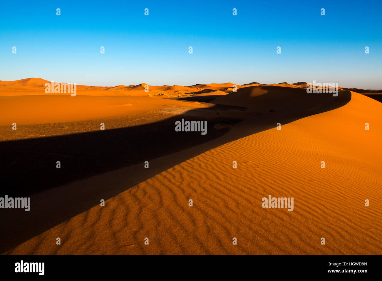 View of the dunes at sunset in Erg Chebbi near Merzouga in Morocco - Stock Image
