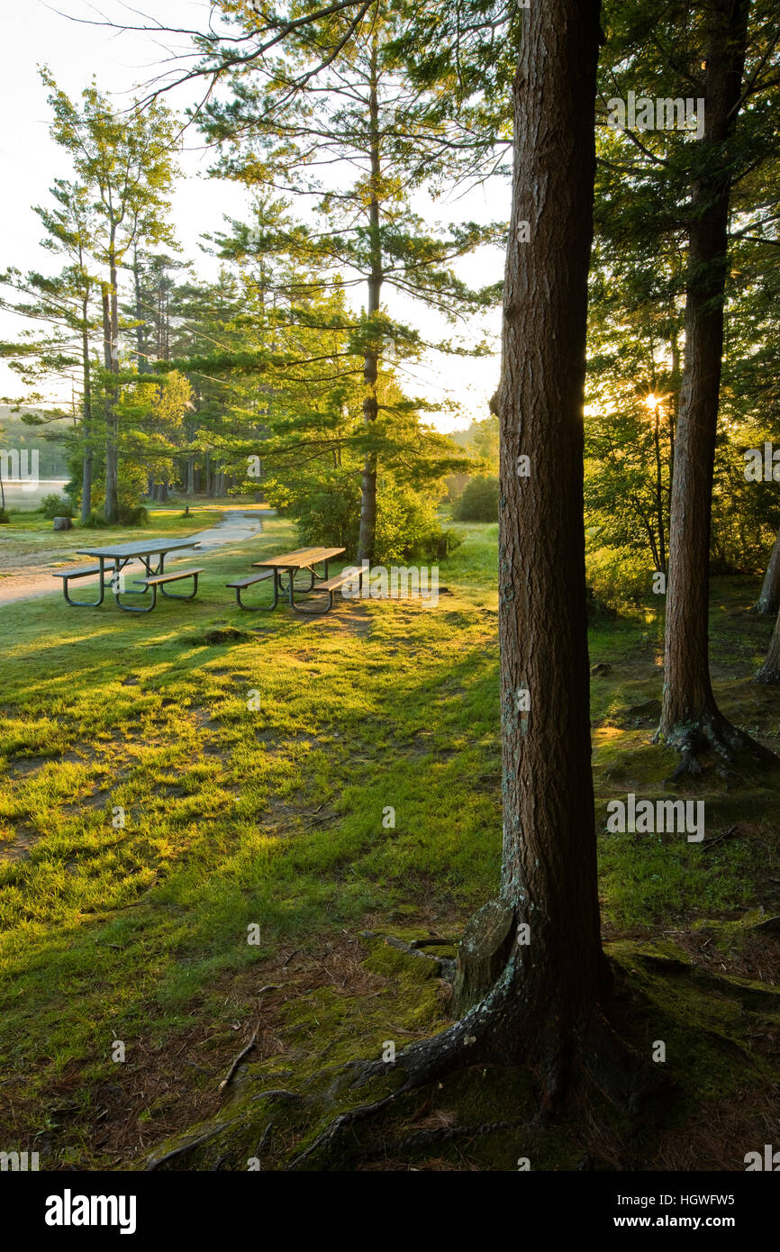 Early morning at the picnic area next to Otter Lake in Greenfield State Park in Greenfield, New Hampshire. Stock Photo