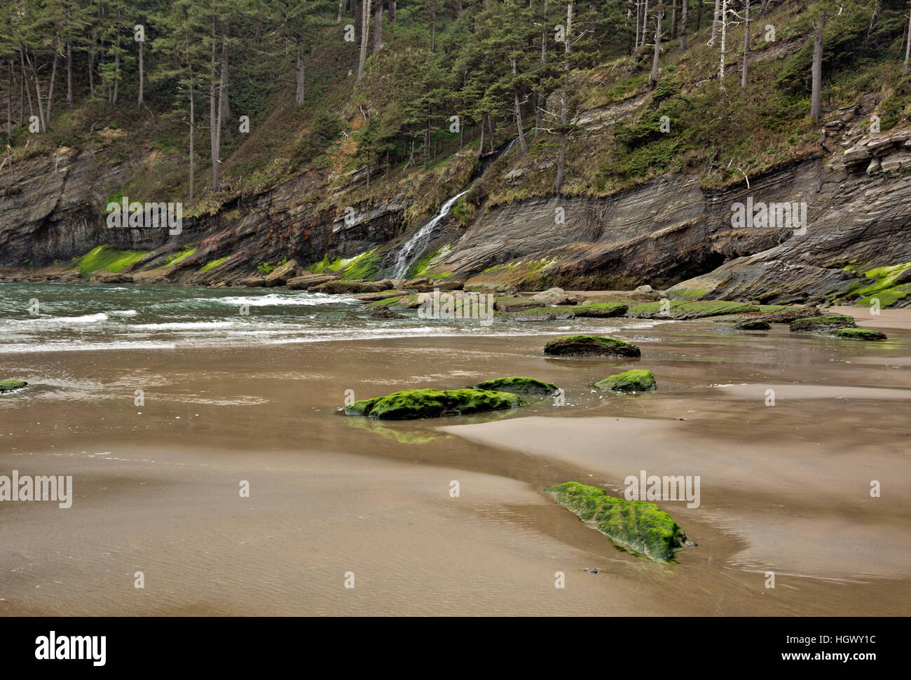 OR02316-00...OREGON - Blumenthal Falls plunging down the steep hillside to Short Sands Beach in Oswald West State - Stock Image