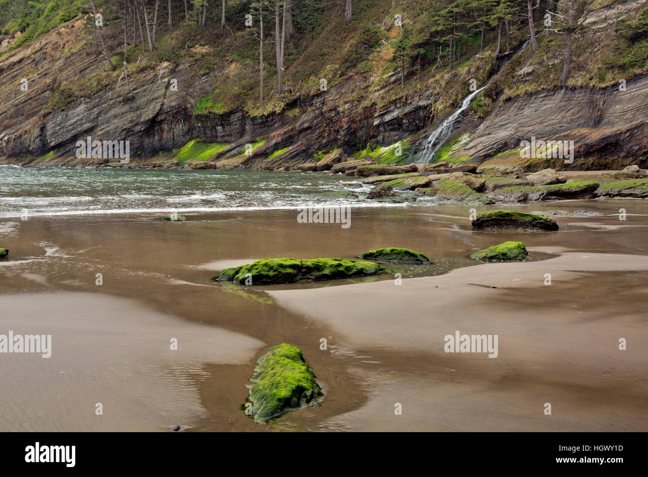 OR02317-00...OREGON - Blumenthal Falls plunging down the steep hillside to Short Sands Beach in Oswald West State - Stock Image