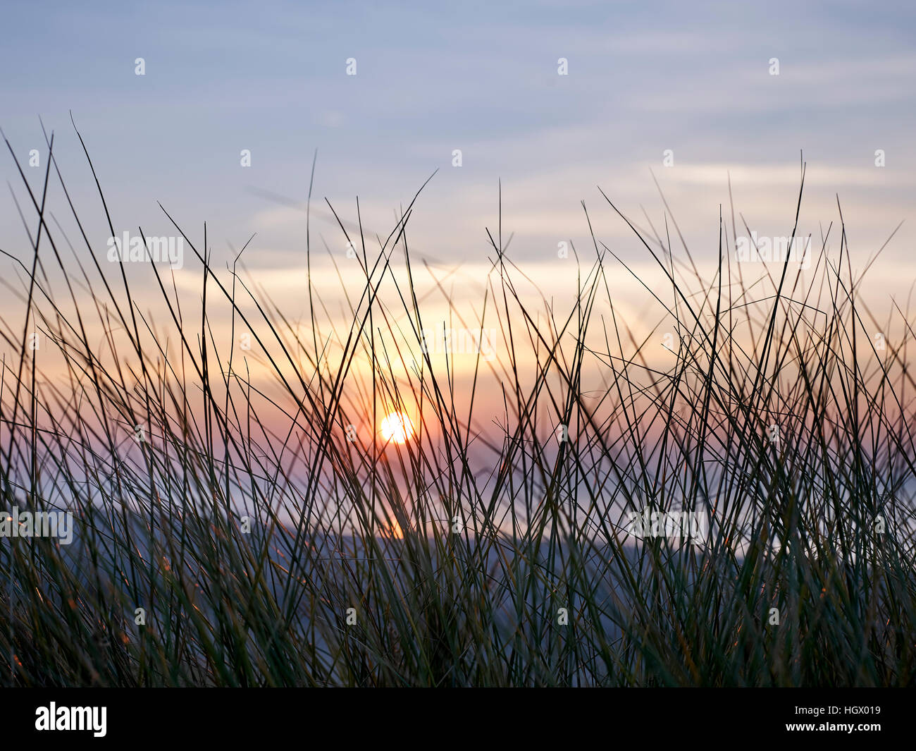 View at beach during sunset, Westduinpark. The Hague, Netherlands - Stock Image
