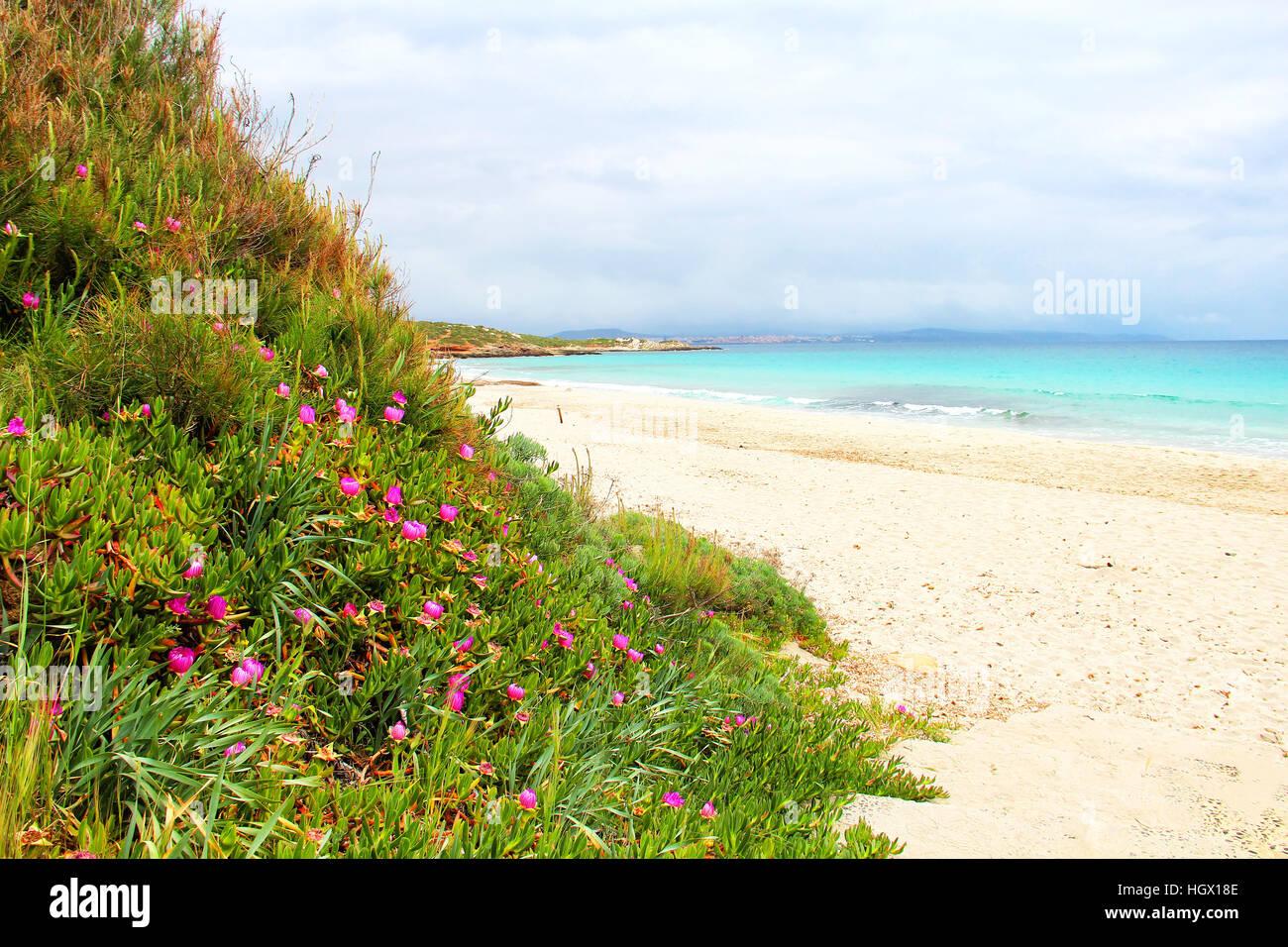 Le Bombarde beach near Alghero, Sardinia, Italy - Stock Image