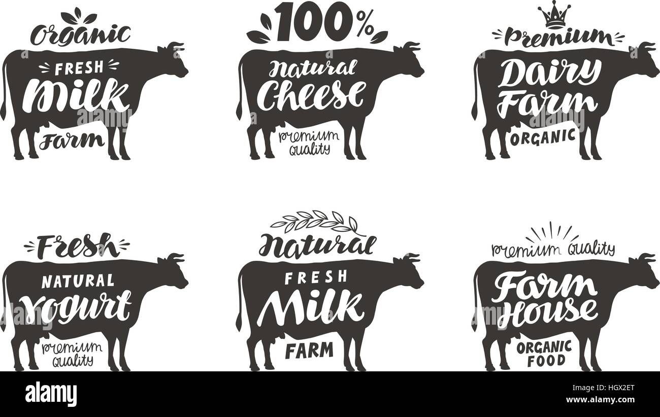 Cow  Vector set food labels, badges and icons  Lettering milk Stock