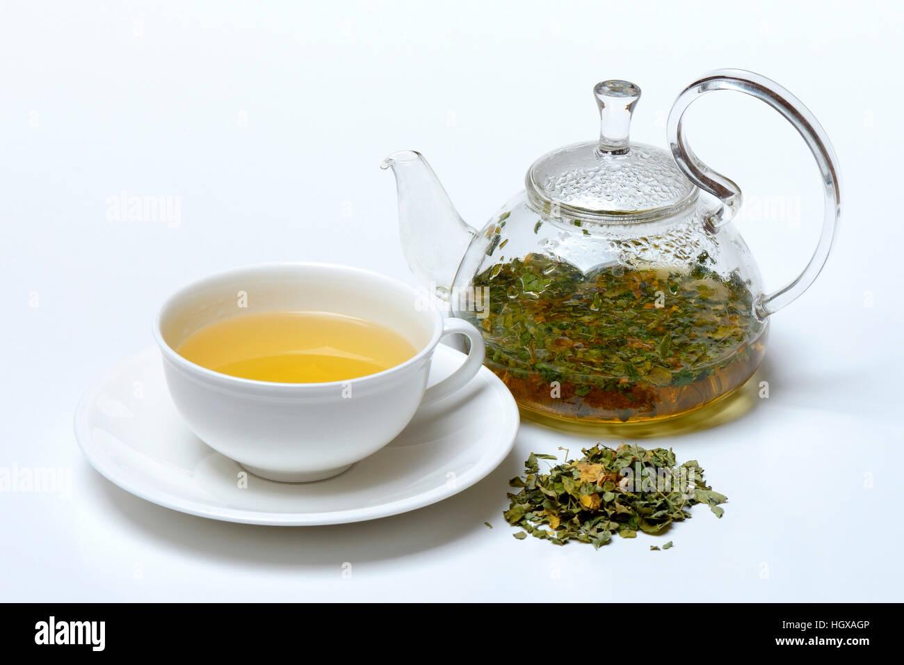Moringa-Tee in Tasse und Teekanne und Moringablaetter, Moringatee Stock Photo