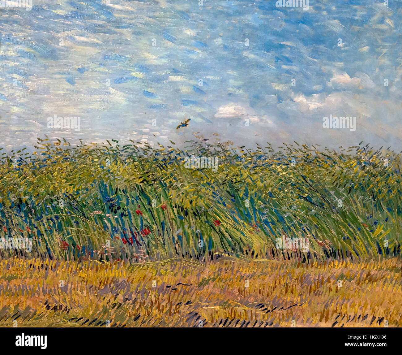 Wheat Field with a Lark,  by Vincent van Gogh, 1887, Netherlands, Europe - Stock Image