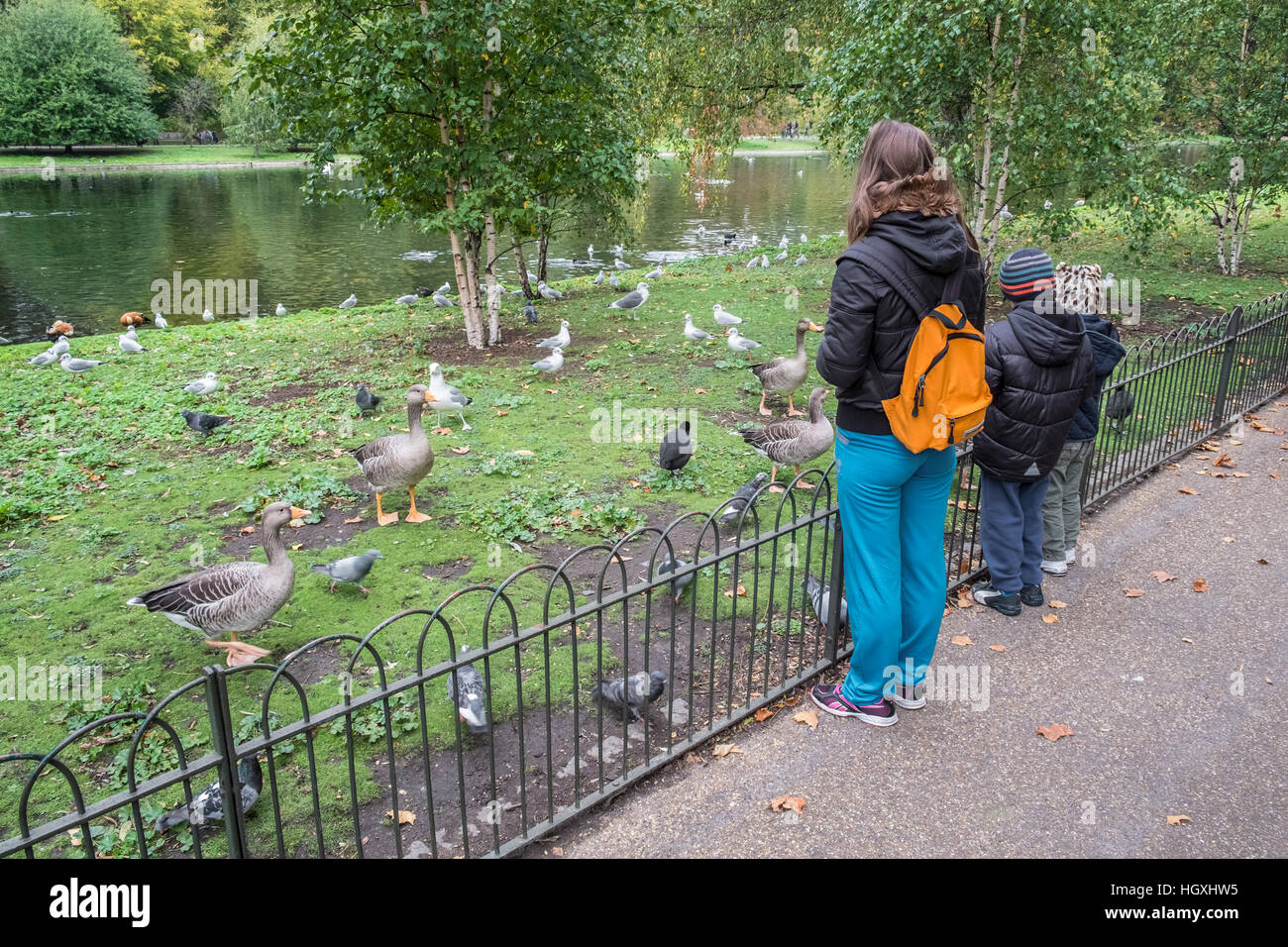 Woman and young children feeding birds in St James Park, London, UK - Stock Image