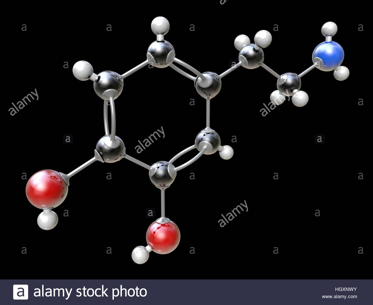 Dopamine. Molecular model of the organic compound domain (C8.H11.N.O2), which functions as a neurotransmitter in - Stock Image