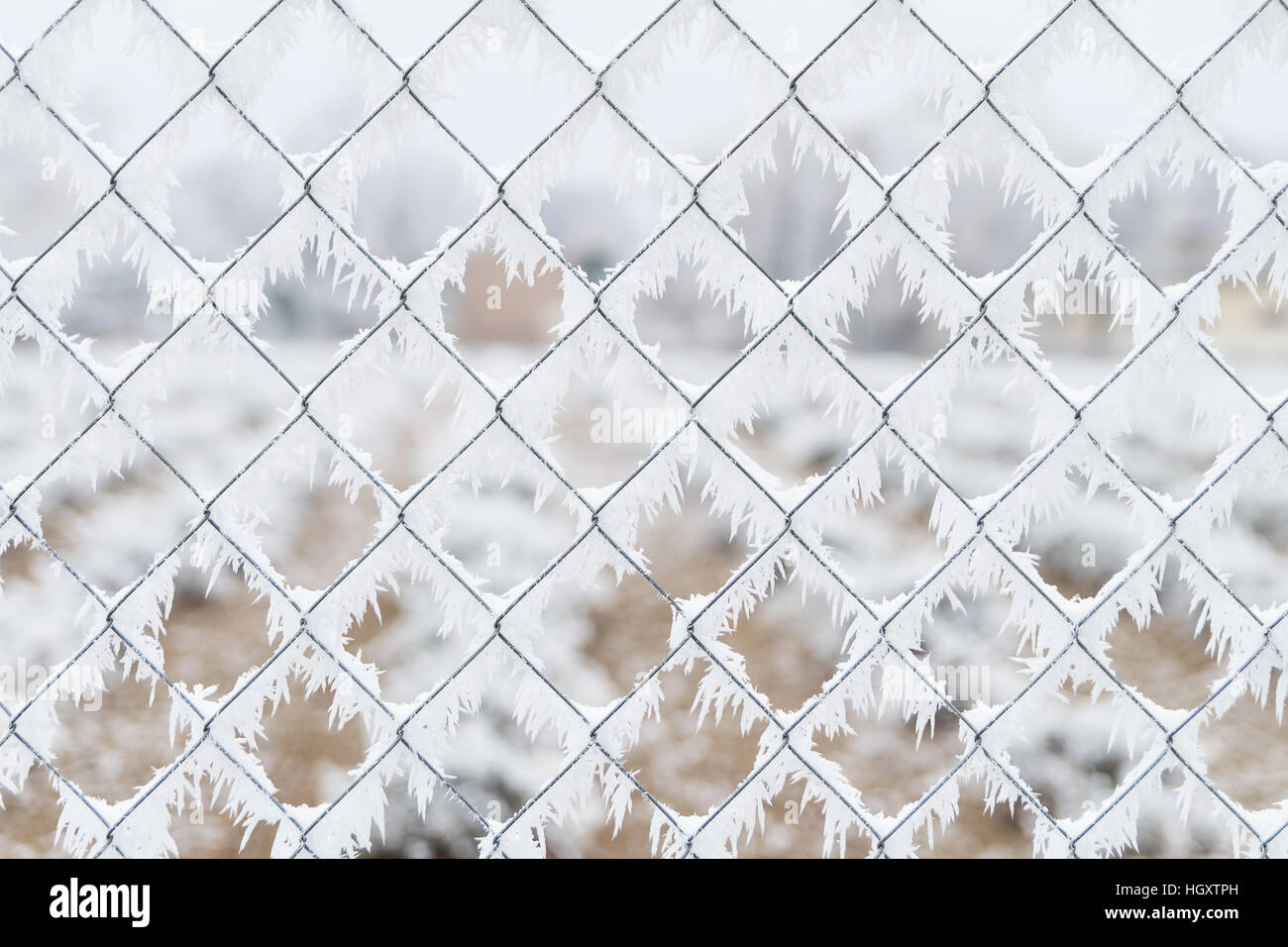 Frozen mesh fence wires with ice in winter background - Stock Image