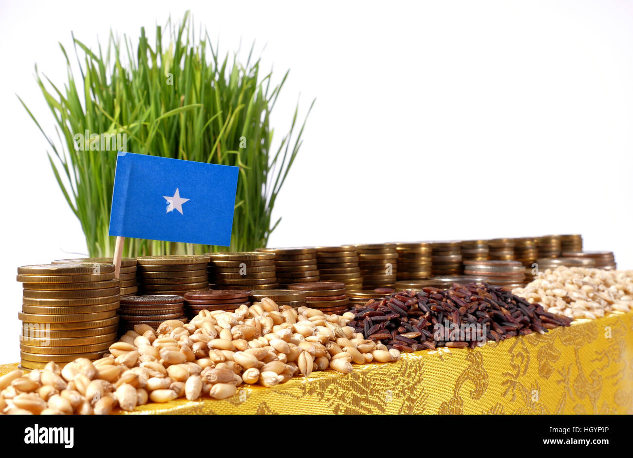 Somalia flag waving with stack of money coins and piles of wheat and rice seeds - Stock Image