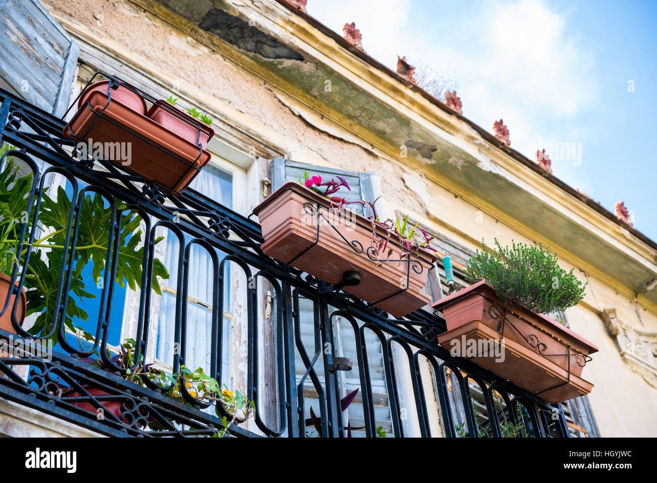 Traditional balcony-garden of an old house in Anafiotika, Plaka, Athens. - Stock Image