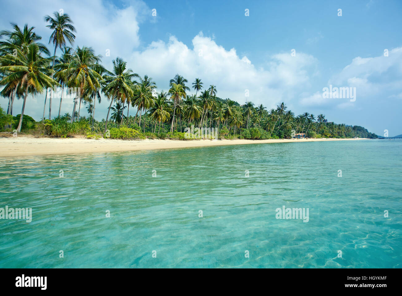Tropical beach and coconut palms in Koh Samui, Thailand - Stock Image