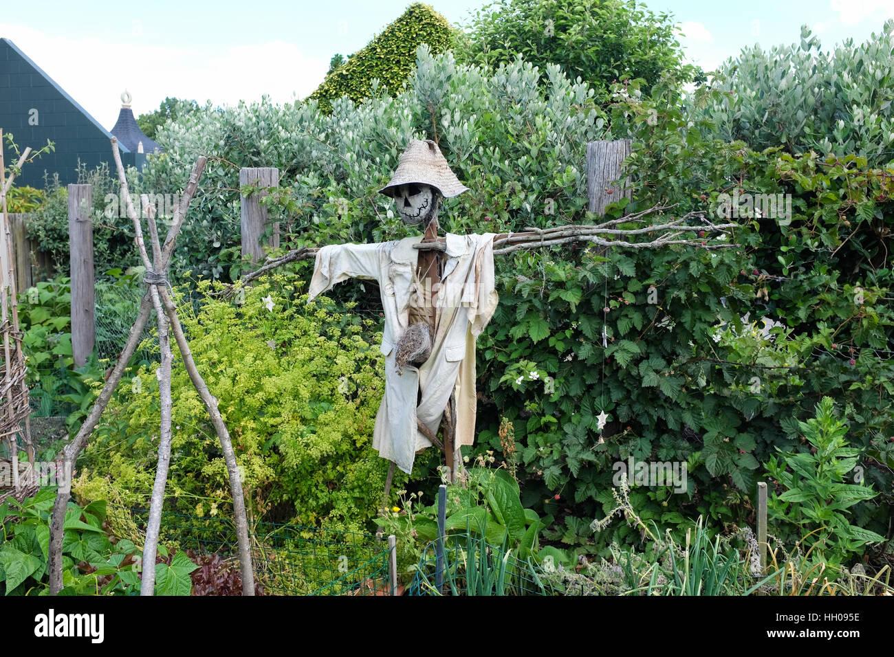 A scarecrow in a garden. - Stock Image
