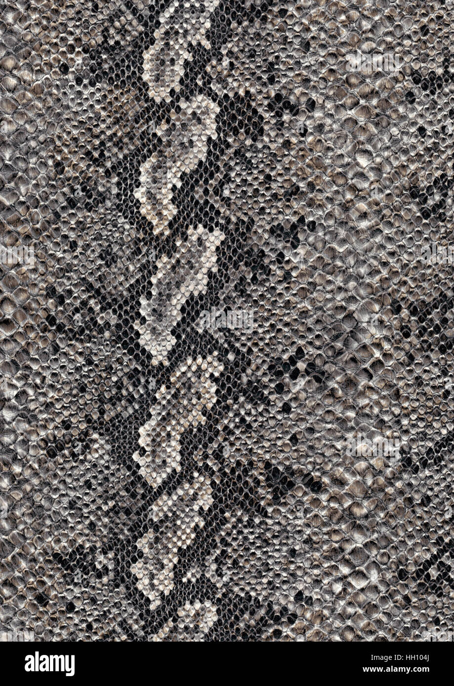full frame scaled abstract grey patterned reptile skin surface - Stock Image
