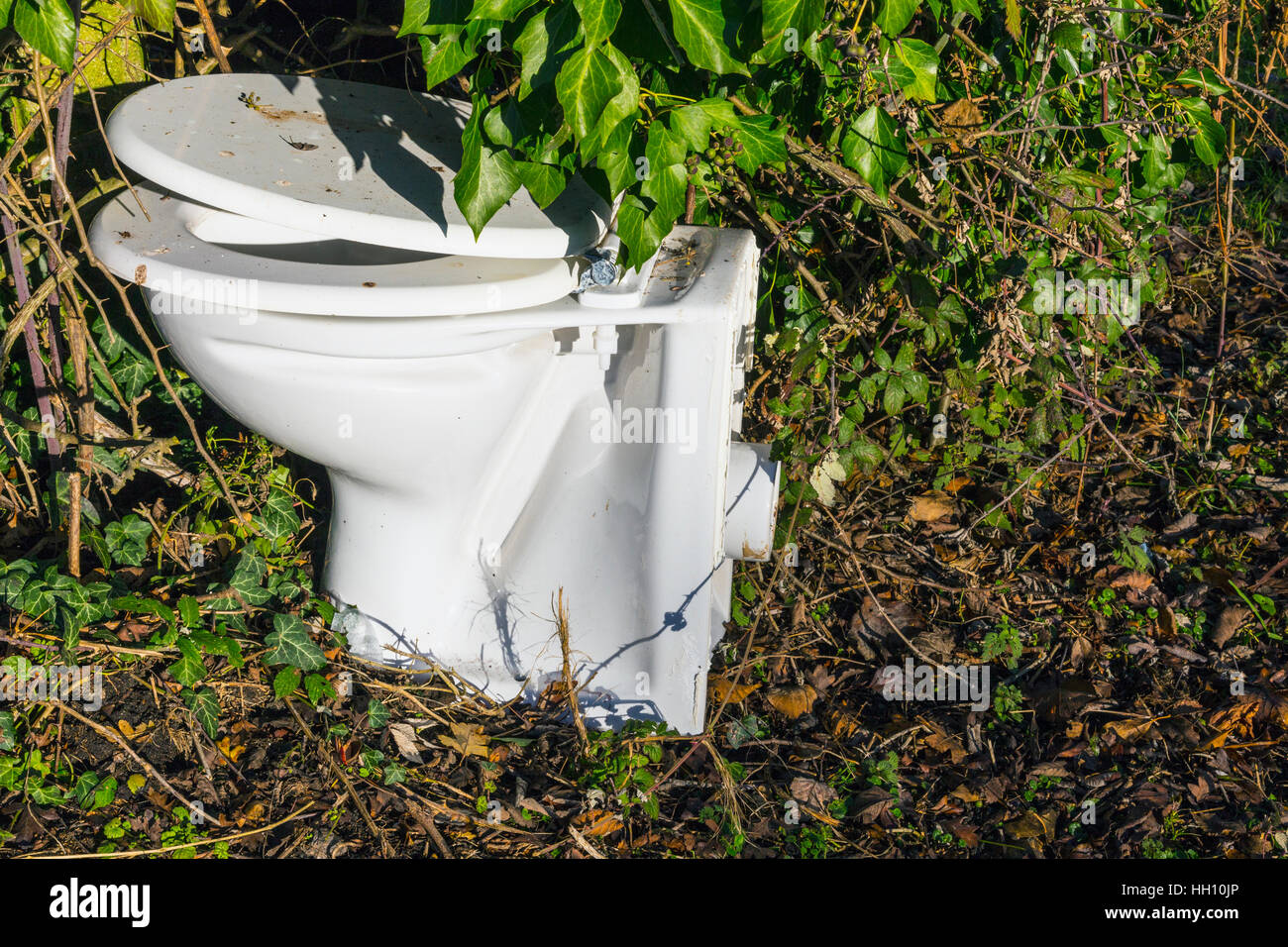 Old toilet by roadside - Stock Image