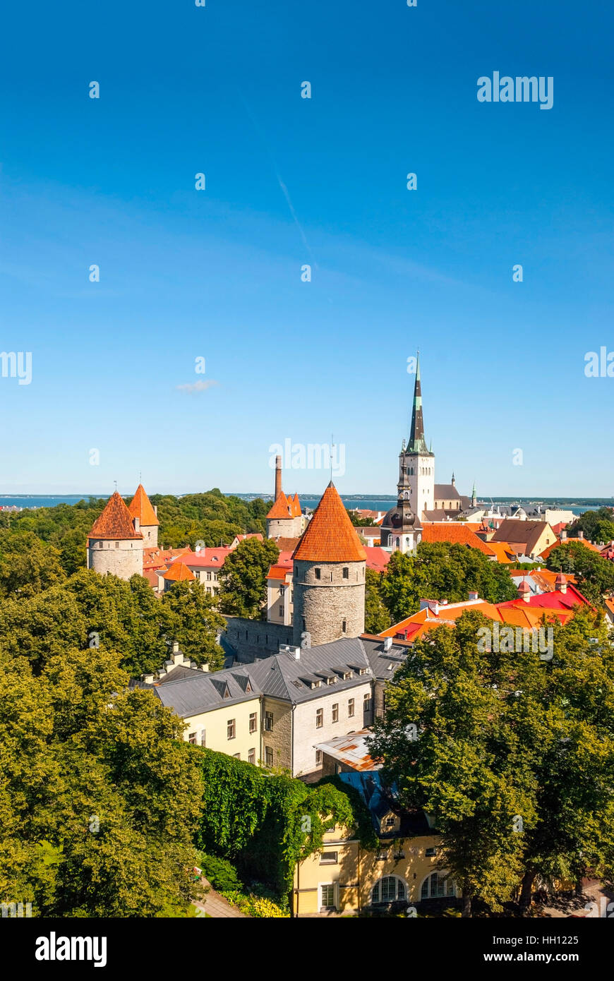 Cityscape of old town Tallinn with bright roofs in sunlight, Estonia - Stock Image