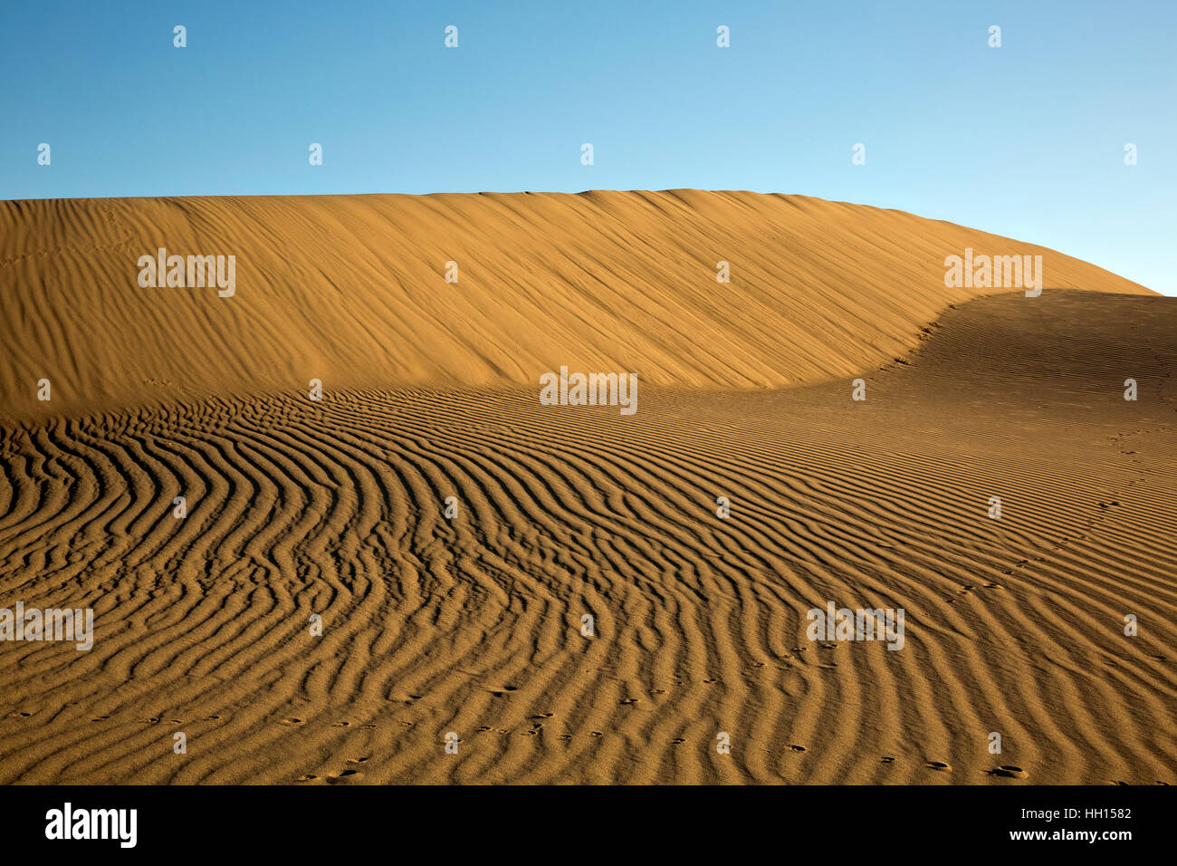 ID00675-00...IDAHO - Patterns and animal tracks in the sand at Bruneau Dunes State Park near Mountain Home. - Stock Image