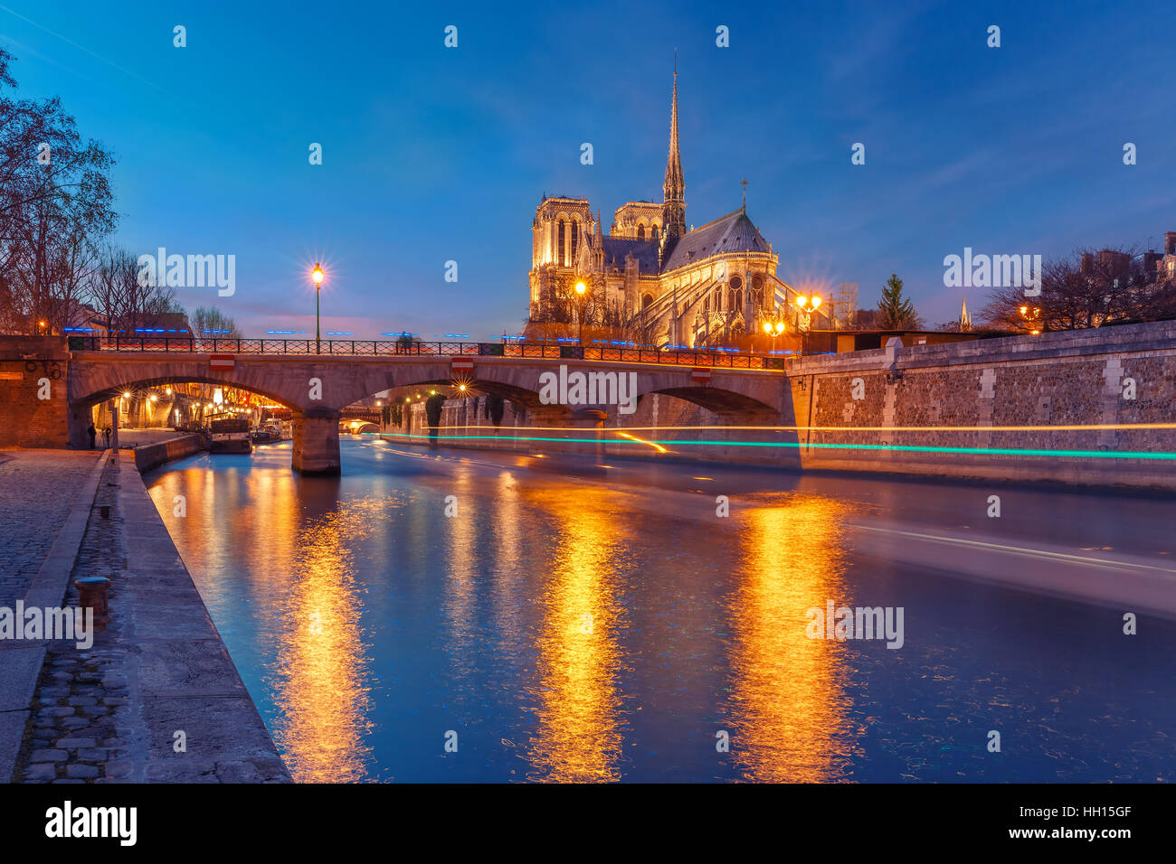 Cathedral of Notre Dame de Paris at night, France Stock Photo