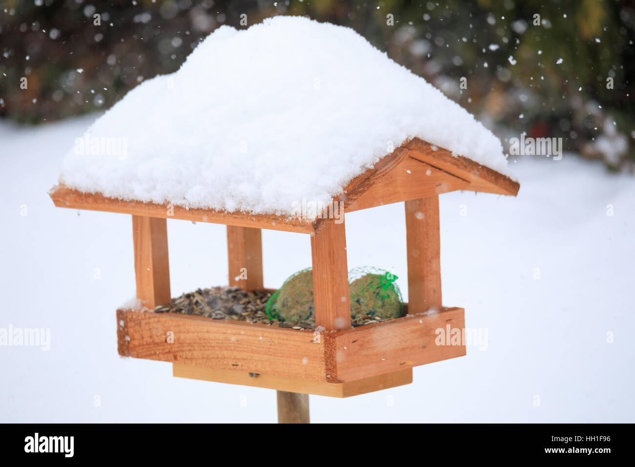 gazebo style listing wooden large feeder rustic fullxfull zoom birdfeeder bird wood cedar il
