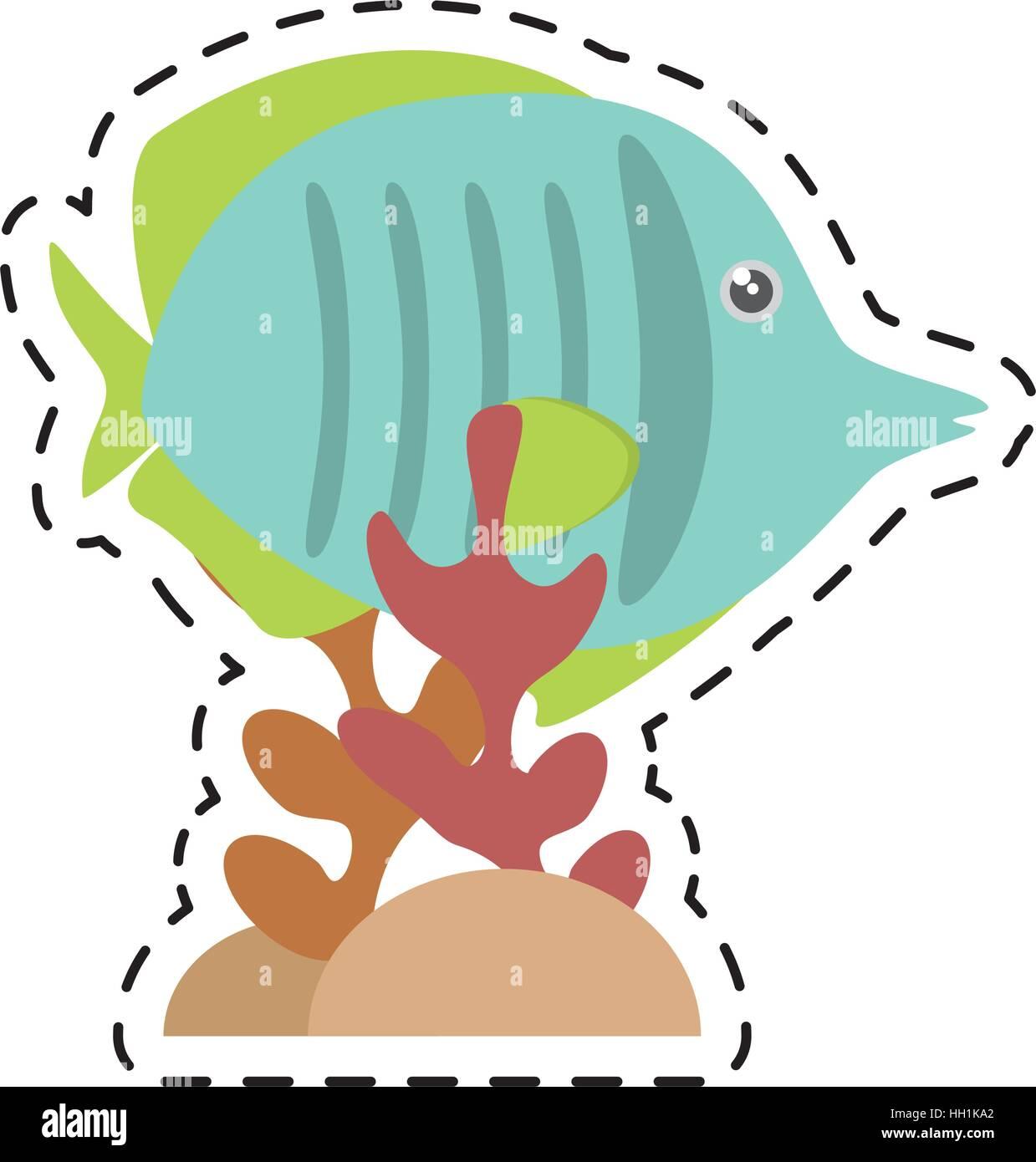 exotic fish sealife freshwater coral - Stock Image