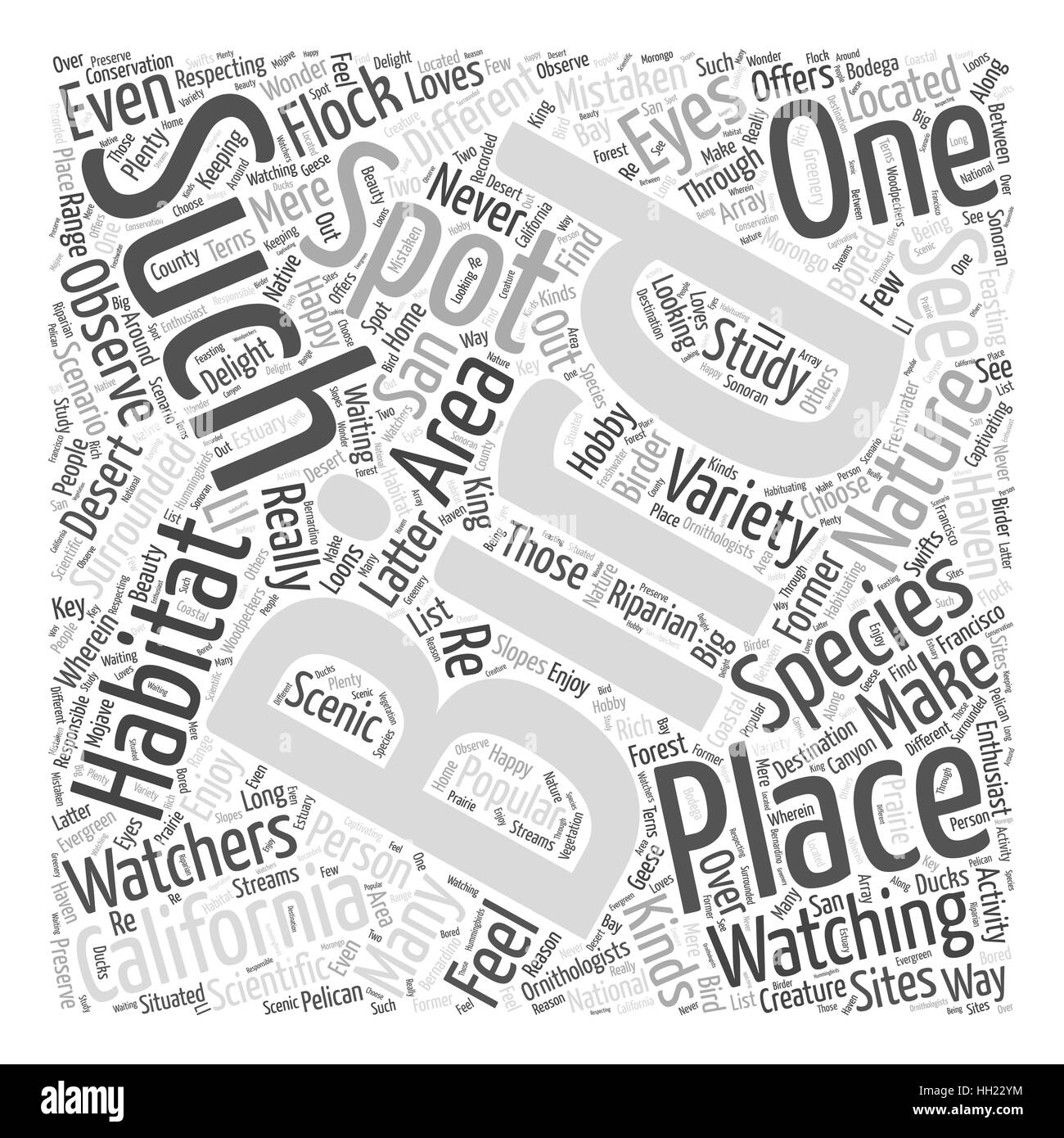 California a Haven for Bird Watching Word Cloud Concept - Stock Image