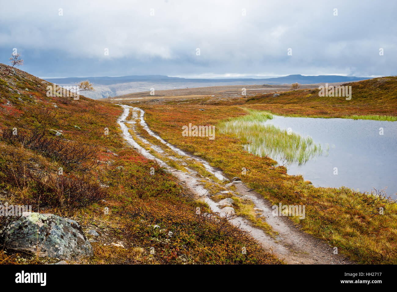 Dirt road in waterlogged moorland soil next to a small pond in a barren valley. Alta, Finnmarksvidda mountain plateau, Stock Photo