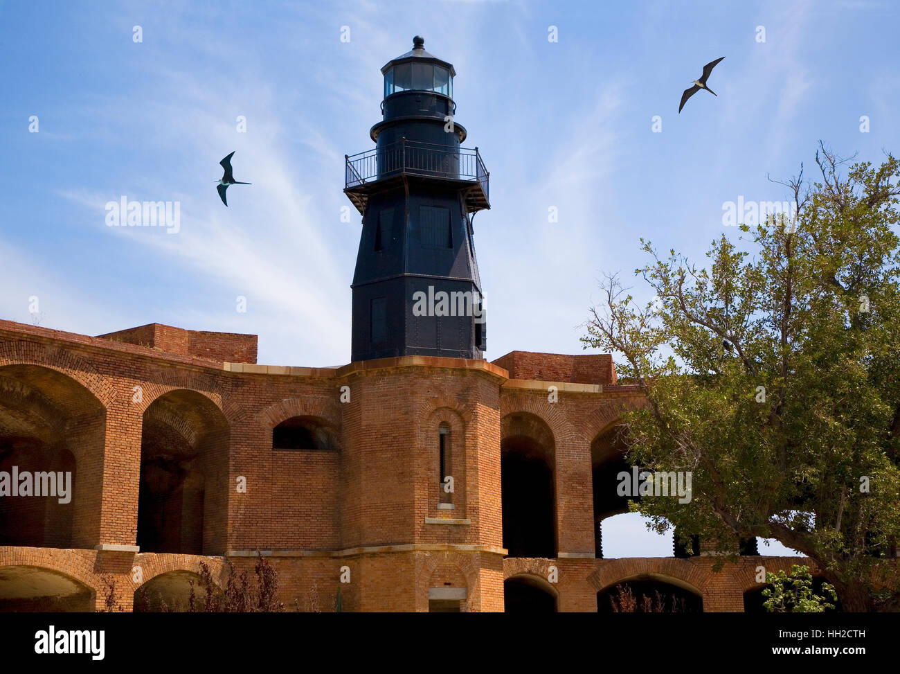 Garden Key Lighthouse sits atop Bastion C of Fort Jefferson at Dry Tortugas National Park, Florida-Magnificent frigate - Stock Image