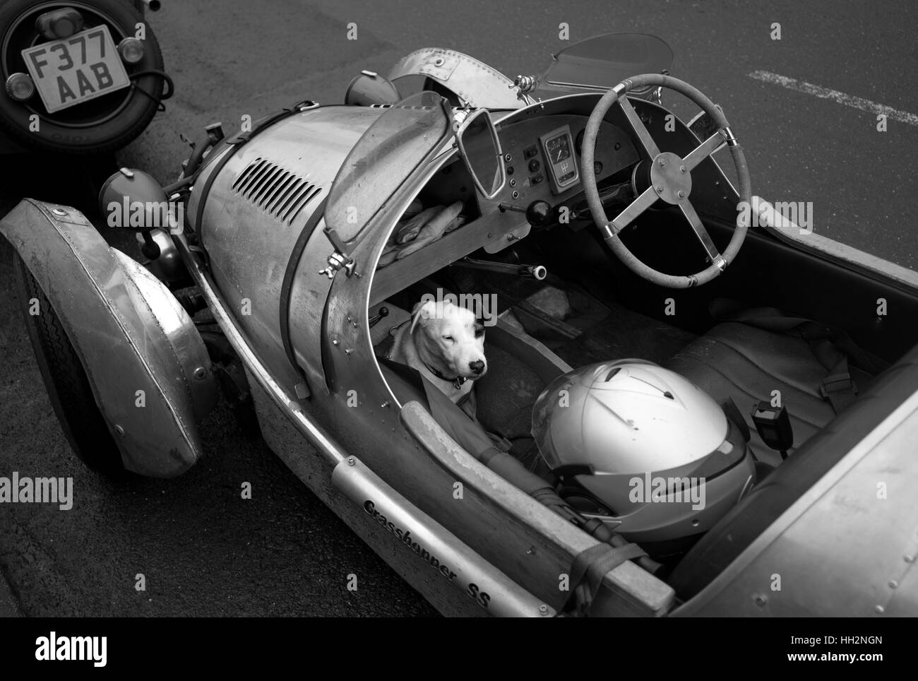 Jack Russell in Pembleton 3 wheeled sports car, Alston - Stock Image