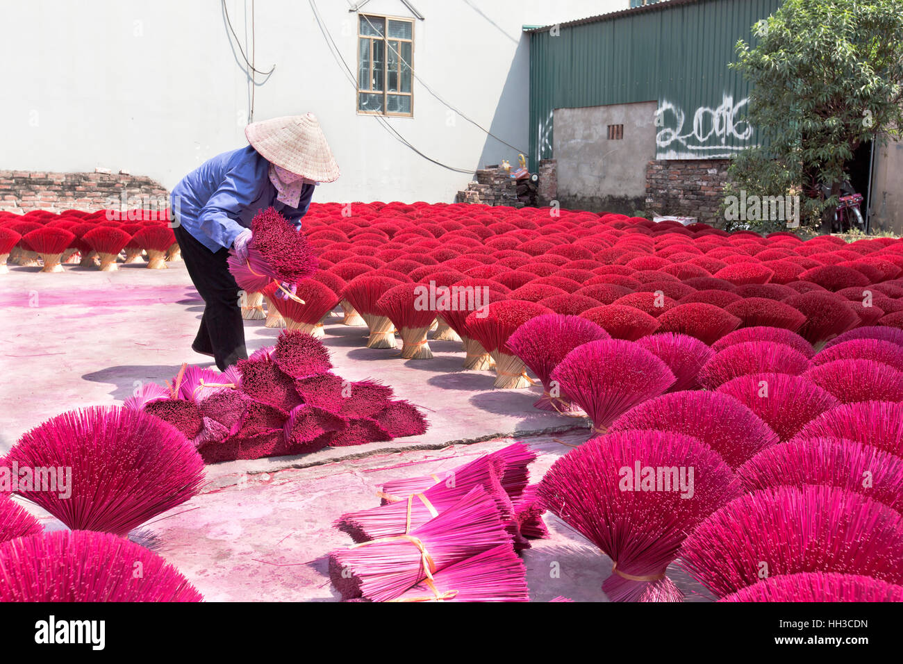 Worker preparing  purple & red bamboo sticks for incense application. - Stock Image