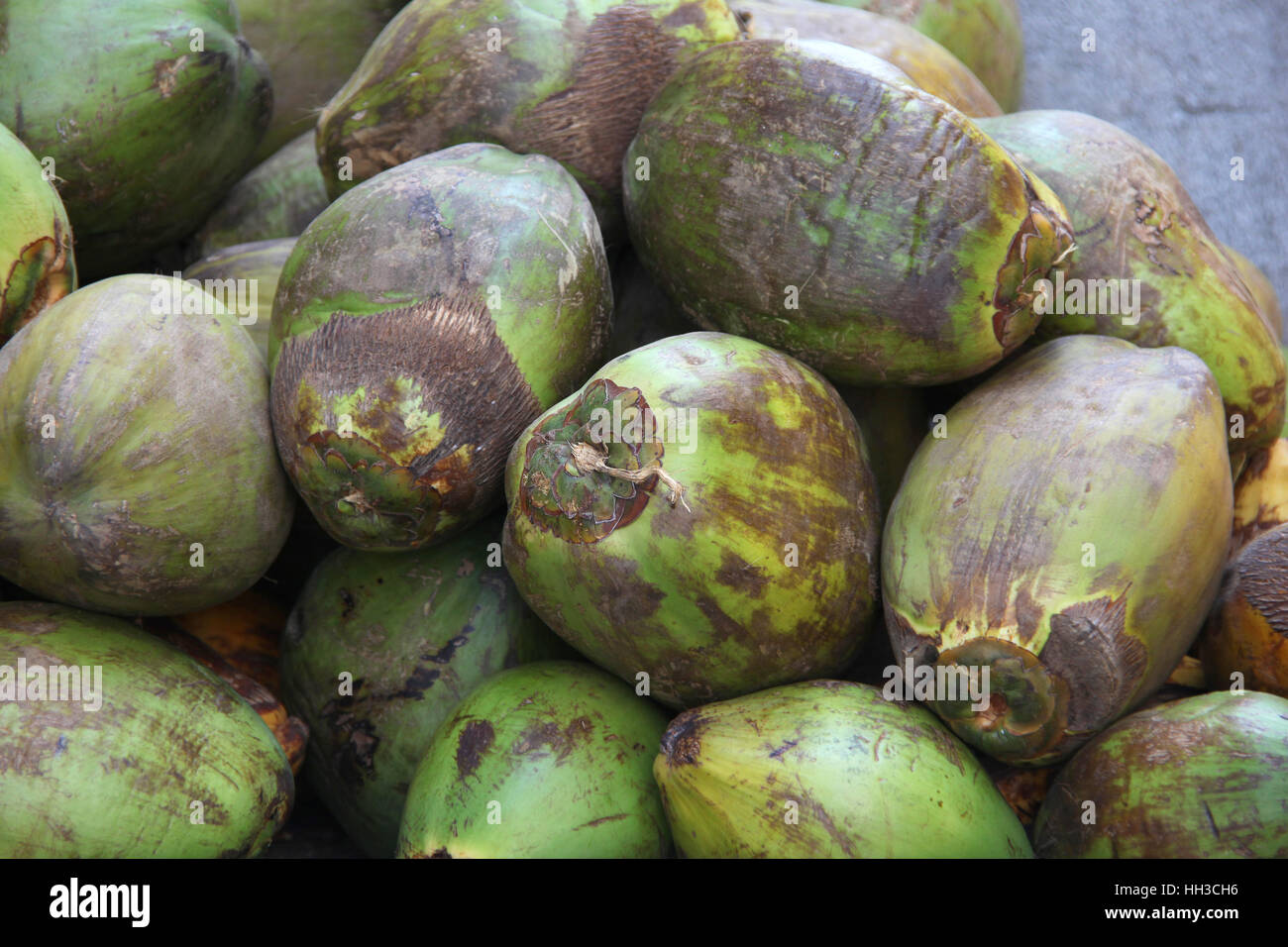 Pile Of Natural Green Ripe Coconuts Ready To Eat Drink
