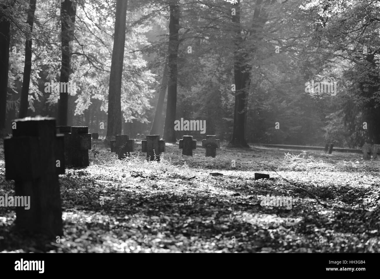 Military cemetery Heidelberg Germany - Stock Image