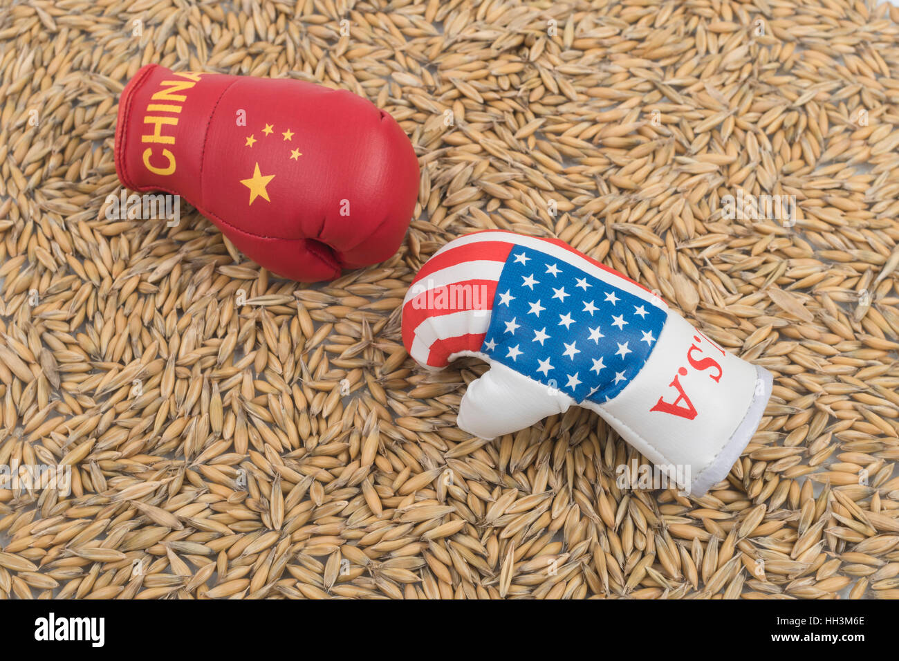 Pile of wheat grain with Chinese & US mini boxing gloves - concept US-China trade war trade talks after import - Stock Image