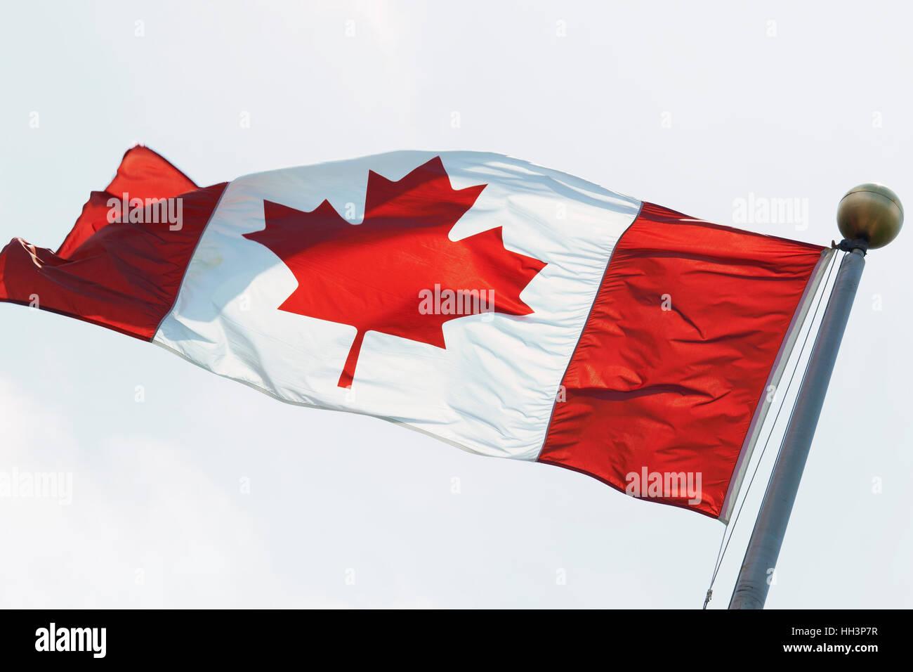Canadian Flag on Flagpole - Stock Image