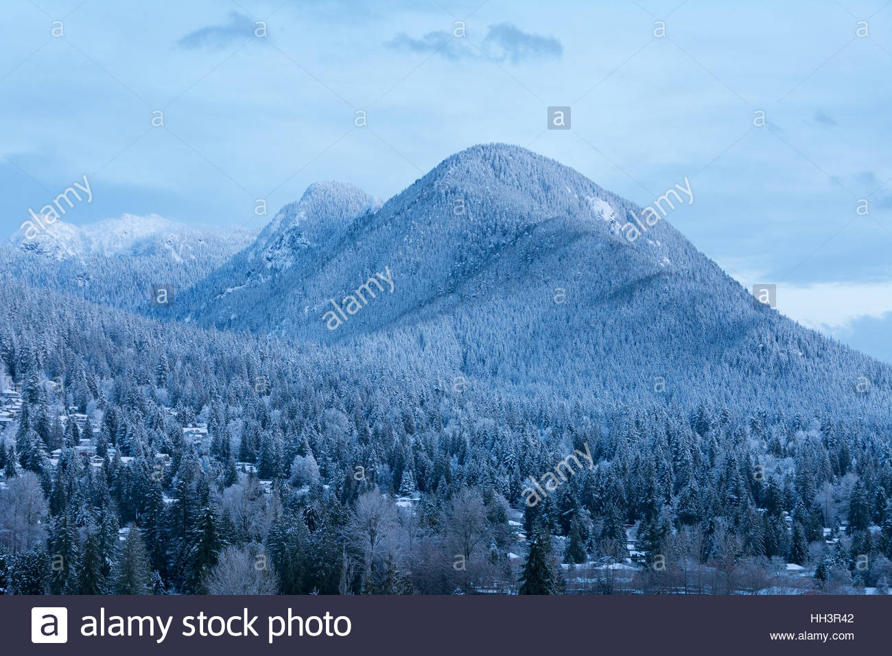 View of Lynn Peak, surrounding trees, and homes of Lynn Valley dusted with snow as seen at twilight, shortly before - Stock Image