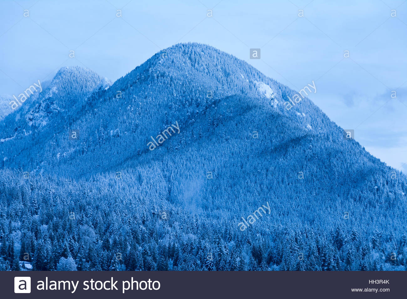 View of Lynn Peak and trees of Lynn Valley dusted with snow as seen at twilight, shortly before sunrise. - Stock Image