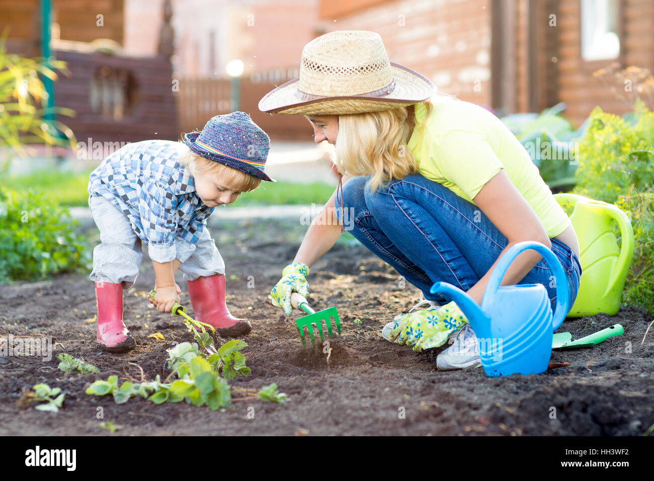 Kid and mother planting strawberry seedling into fertile soil outside in garden Stock Photo