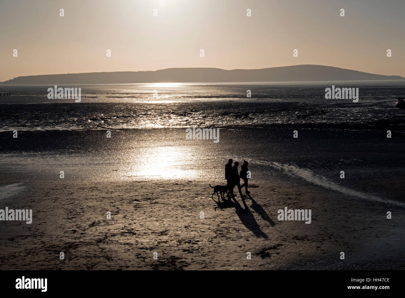 Dog walkers on the beach on a sunny winter day in Weston-super-Mare, England Stock Photo